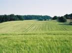 Holsteinische-Schweiz-e1503087434342