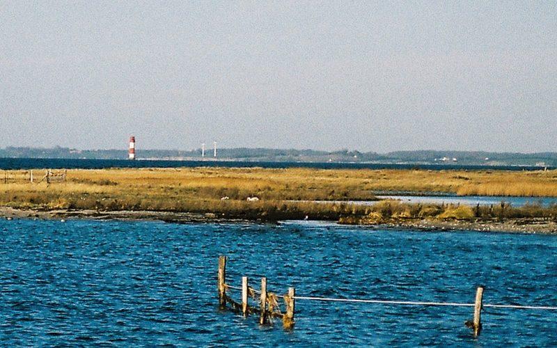 Leuchtturm Kalkgrund, Leuchttürme Ostsee, Kodak Portra 400 |©mare.photo