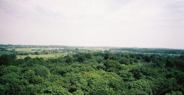 Bungsberg | © weites.land