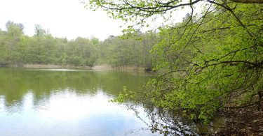 Kolksee (Kasseedorf) |©weites.land