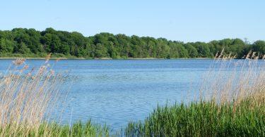 Stolper See - Seen in Schleswig-Holstein |©weites.land