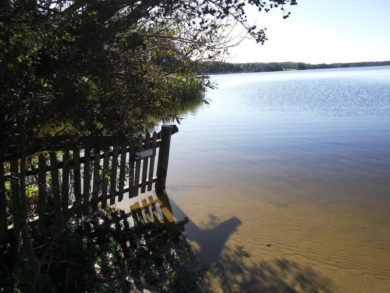 Bistensee – Seen in Schleswig-Holstein  ©weites.land