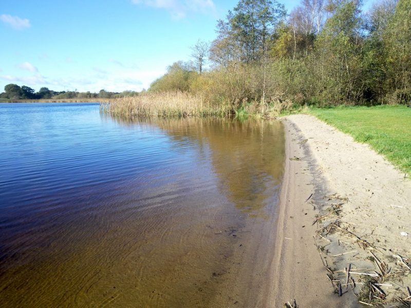 Arenholzer See – Seen in Schleswig-Holstein |©weites.land