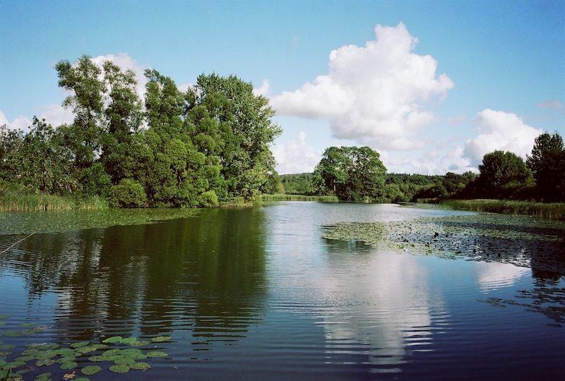 Mühlenteich Kasseedorf, Seen in Schleswig-Holstein