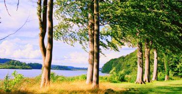 Bothkamer See | © weites.land