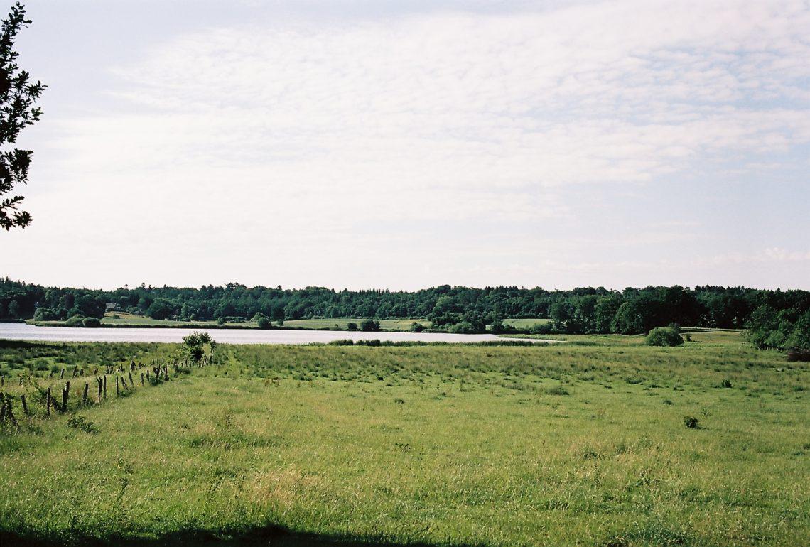 Sibbersdorfer See   © weites.land