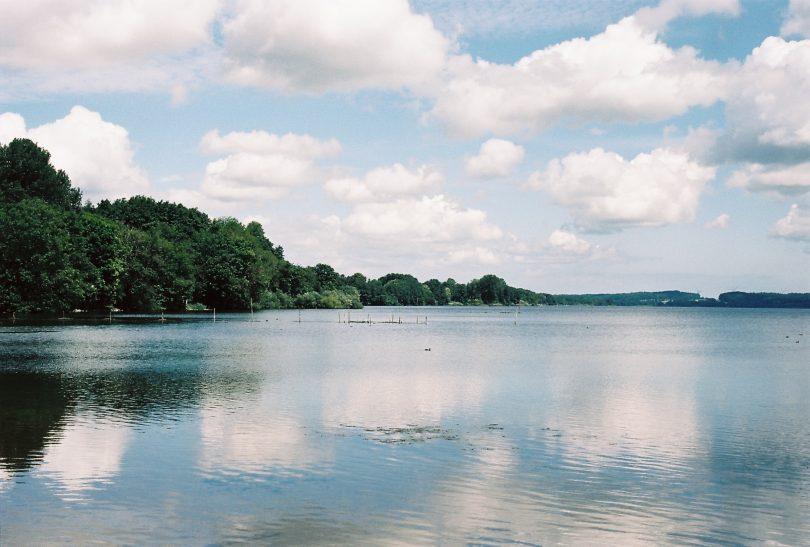 Wittensee – Seen in Schleswig-Holstein | © weites.land