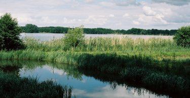 Bornhöveder See | © weites.land