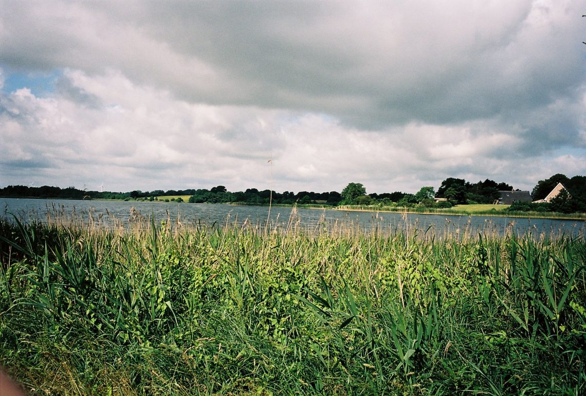 Middelburger Seen – Seen in Schleswig-Holstein |©weites.land