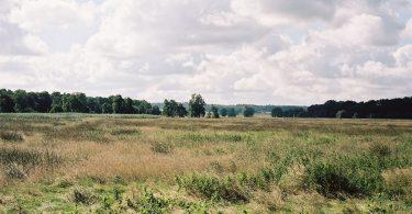 Heidmoor | © weites.land