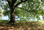 Kleiner Kiel | © weites.land