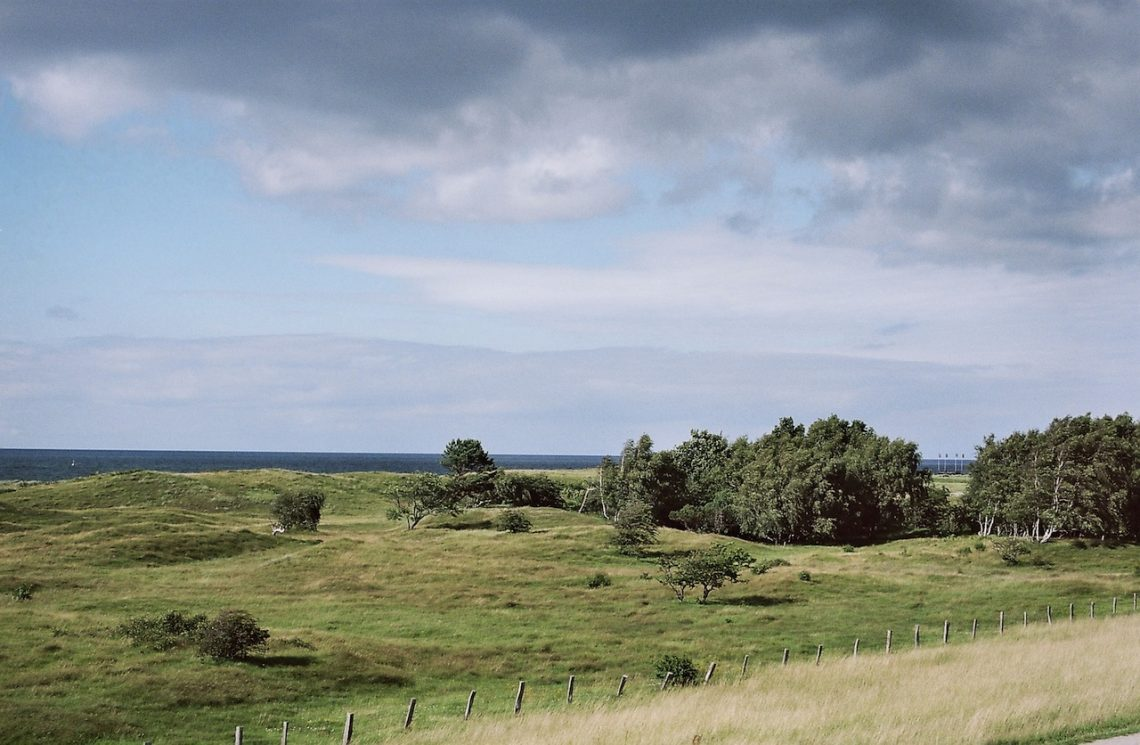 Naturschutzgebiet Weißenhäuser Brök | © weites.land