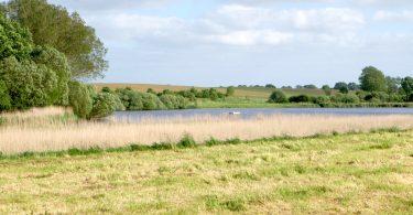 Honigsee - Seen in Schleswig-Holstein |©weites.land