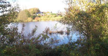 Langholzer See – Seen in Schleswig-Holstein   © weites.land