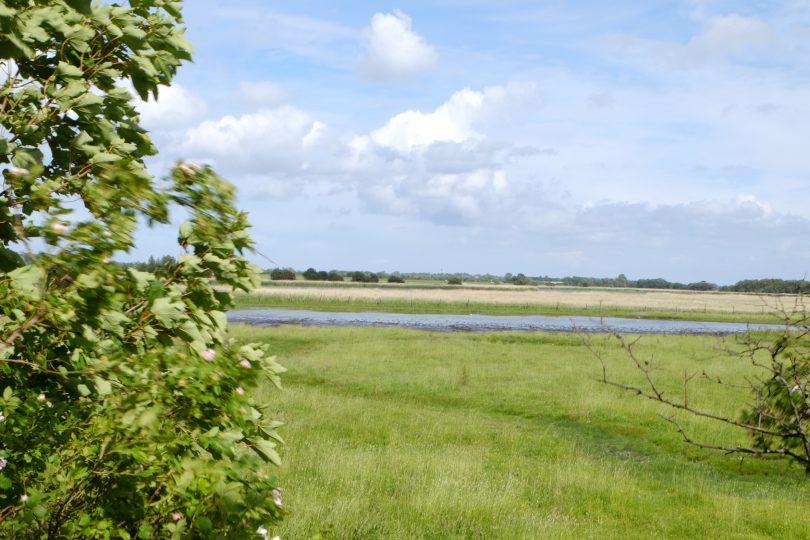 Sahrensdorfer Binnesee –Seen in Schleswig-Holstein |©weites.land