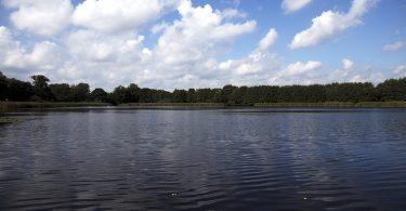 Stubbenteich – Seen in Schleswig-Holstein  © www.lydisignphotography.de