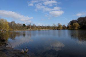 Schwartauer See im Kurpark Bad Schwartau |©weites.land