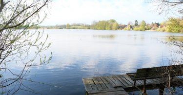 Neukirchner See in Neukirchen, Gemeinde |©weites.land
