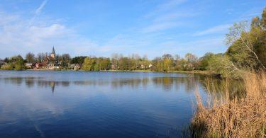 Neukirchner See in Neukirchen, Gemeinde Malente |©weites.land