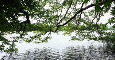 Heidensee – Seen in Schleswig-Holstein |©weites.land