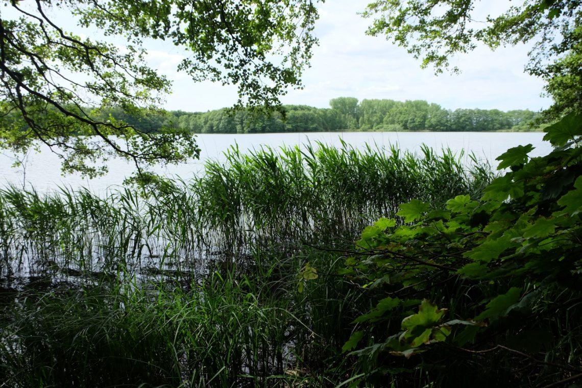Heidensee – Seen in Schleswig-Holstein  ©weites.land