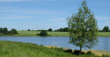 Dodauer See - Seen in Schleswig-Holstein |©weites.land