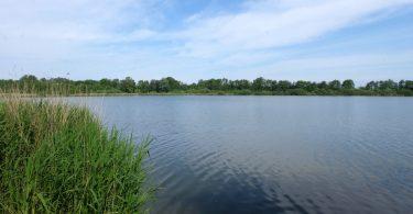 Redingsdorfer See – Seen in Schleswig-Holstein |©weites.land