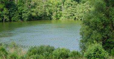 Wennsee –Seen in Schleswig-Holstein |©weites.land