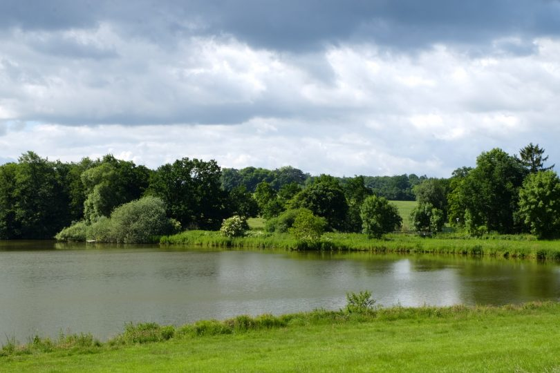 Flörkendorfer Teich – Seen in Schleswig-Holstein |©weites.land