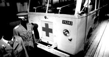 Die weißem Busse |©mare.photo