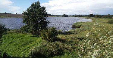 Ornumer Au – Seen in Schleswig-Holstein |©weites.land