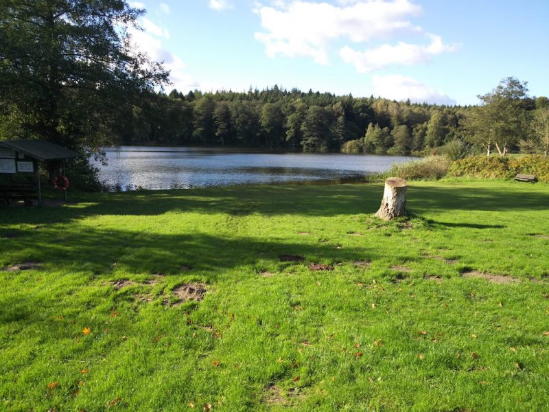 Holtsee - Seen in Schleswig-Holstein, aufgenommen mit Nikon Keymission 80 |©weites.land