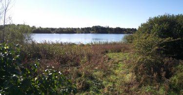 Heidsee in Owschlag –Seen in Schleswig-Holstein  ©weites.land
