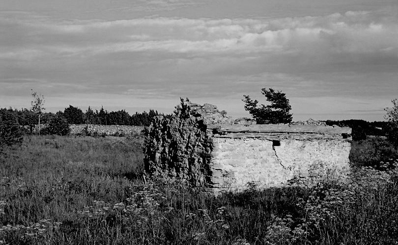 Fårö auf Gotland   © mare.photo