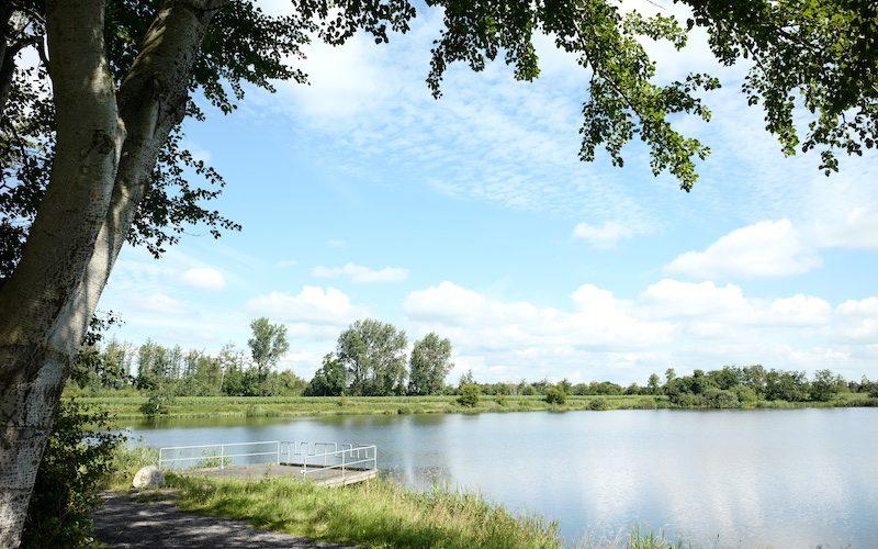 Dörpumer Mergelkuhlen, Seen in Schleswig-Holstein, Leica M Elmarit 2.8 28 asph.
