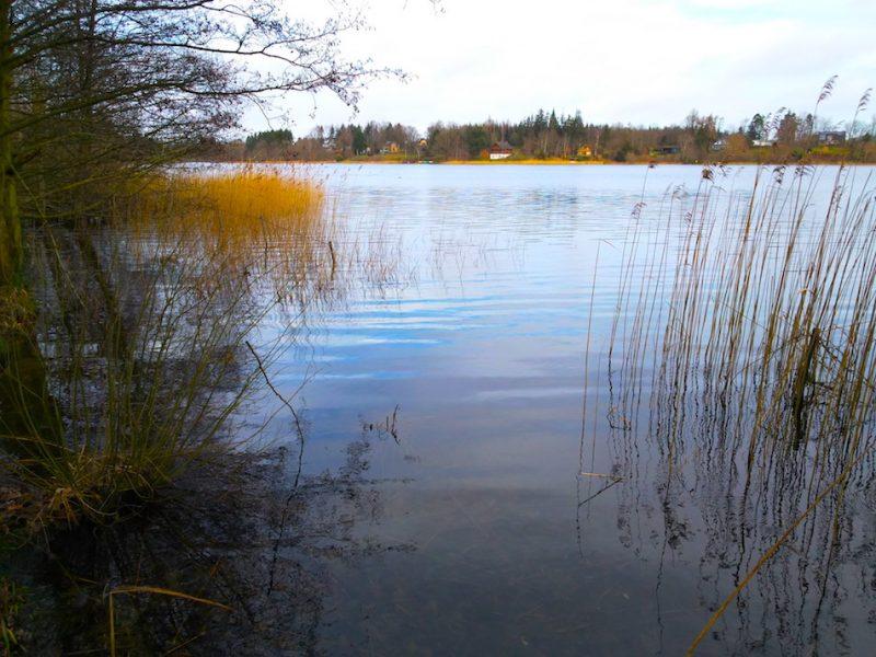 Langsee Kosel – Seen in Schleswig-Holstein | ©weites.land