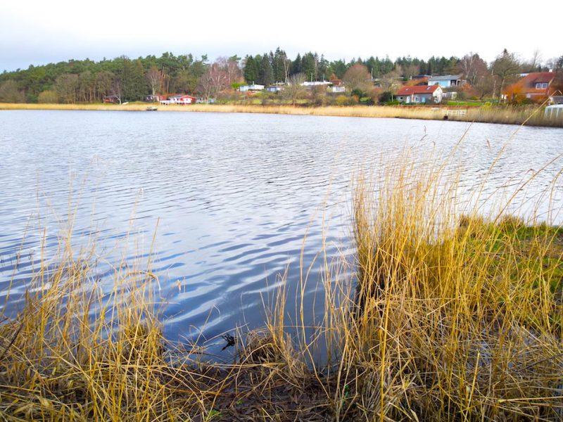 Wesebyer See – Seen in Schleswig-Holstein  ©weites.land