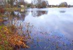 Bollingstedter Mühlenteich – Seen in Schleswig-Holstein |©weites.land