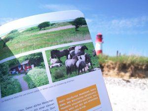 52 kleine & große Eskapaden in Schleswig-Holstein von Stefanie Sohr und Volko Lienhardt | © weites.land