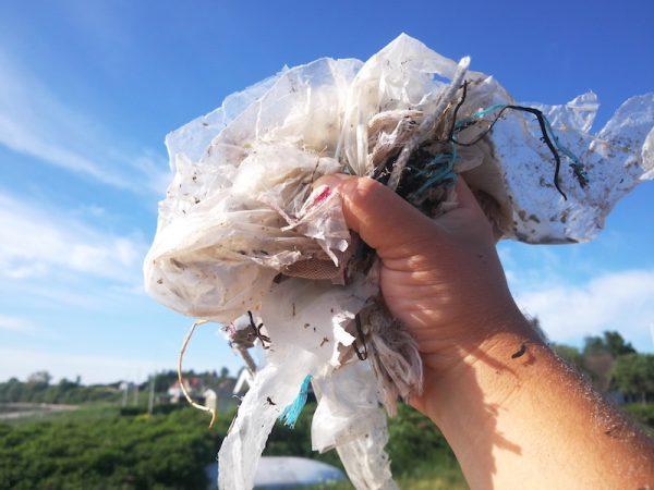 Plastikfreie Küste |©weites.land