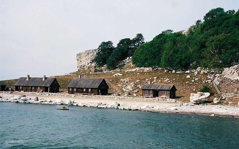 Gotland entdecken - Lille Karlsö |©mare.photo