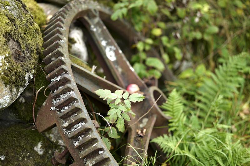 Äskhults By, Leica SL 75mm