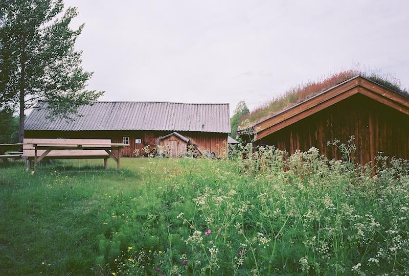 Museum Bjorklundgard, Bjørklund Gård, Pasvikdal, Pasvik, Svanvik, Leica M Elmarit 2.8 28 asph., Kodak Ektar |©mare.photo
