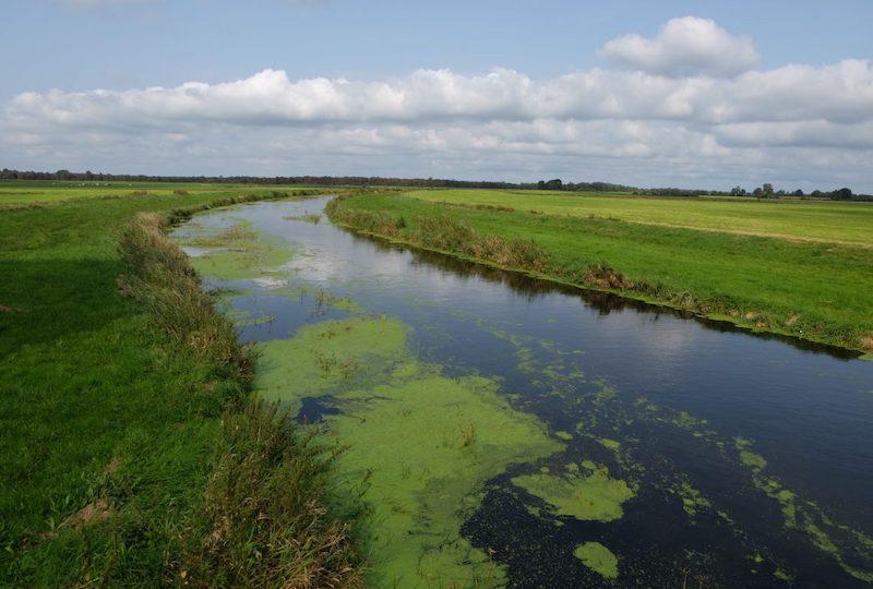 Haaler Au, Flüsse in Schleswig-Holstein |©weites.land