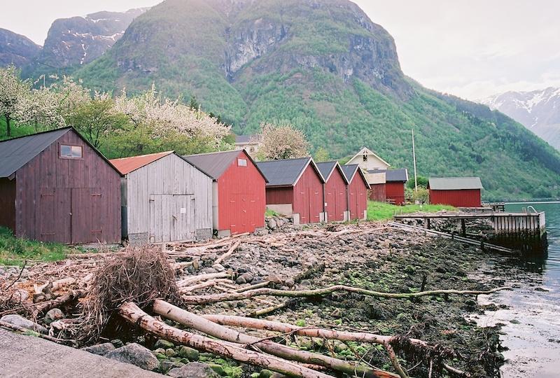 Fresvik-Sognefjord-Kodak-Ektar.jpg
