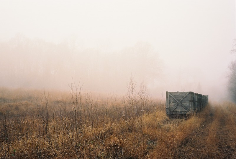 Schülper Moor, Grosses Moor, Schülp bei Nortorf |©mare.photo