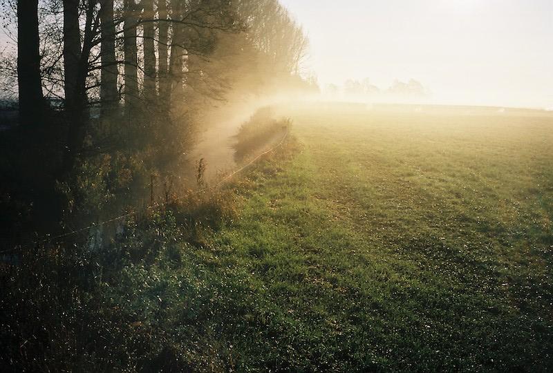 Wildes Moor bei Osterrönfeld, Moore in Schleswig-Holstein | © mare.photo