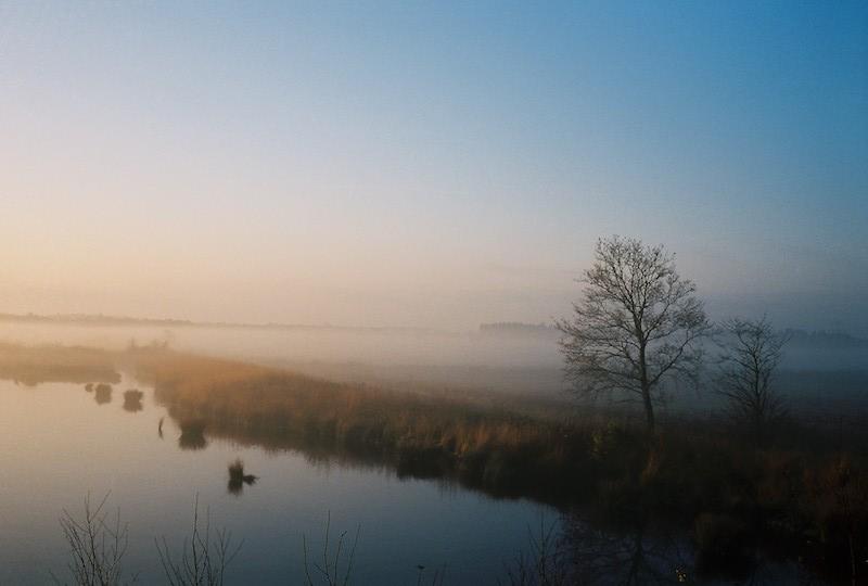 Wildes Moor bei Osterrönfeld