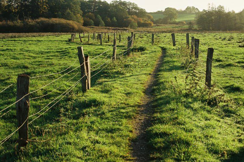 Eidertalwanderweg im Bordesholmer Land | © weites.land