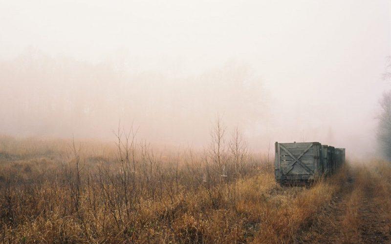 Großes-Moor-Schülper-Moor.-Fotografiert-mit-Leica-M7-und-Summilux-M-1.450-asph.-new-auf-Kodak-Portra-160-©-mare.photo